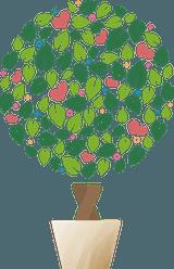 Råd och tips om markiser och markivävar